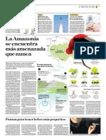 La Amazonía Se Encuentra Más Amenazada Que Nunca