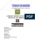 Report on IP Addressing