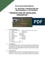 Proyecto en Ecoeficiencia Hortalizas