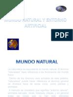 mundonaturalyentornoartificial-101205091942-phpapp01