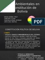 Leyes Ambientales en La Constitución de Bolivia