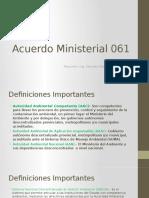 Acuerdo Ministerial 061.