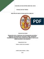 tesis magi.docx