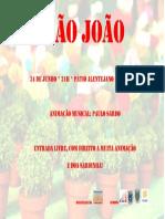 São Joao 2016