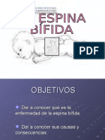 La Espina Bifida