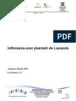 291156147 Plantatia de Lavanda Proiect FS