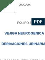 vejiga neurogenica