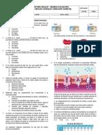 Valoracion Estructura Celular - Membrana Plasmatica