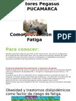 Control Nutricional Conductores Pegasus Pucamarca