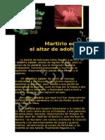 Martirio Del Imam 'Ali (P)