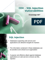 CEH IT Security SQL Injection