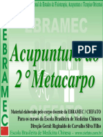 Aula Acupuntura Do 2º Metacarpo.pdf