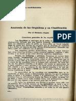 Anatomia deOrquideas 1959.pdf