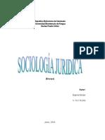 Ensayo Sociologia Ender Junio 2016