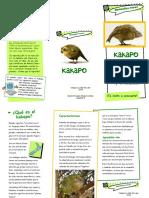 Kakapó