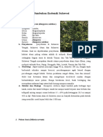 Tumbuhan Endemik Sulawesi