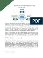 EJECUCIÓN EXITOSA DE PROYECTOS.pdf
