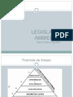 Legislacion ambiental Ley 20417.ppt
