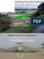 I Semana- El Ambiente-.ppt