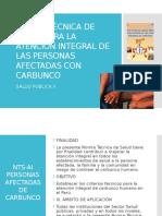 Norma Tecnica para la atencion integral del Carbunco - MINSA PERÚ