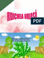 4_ridichea_uriasa