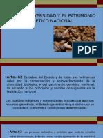 DIAPOS CAPITULO II DIVERSIDAD GENETICA.pptx