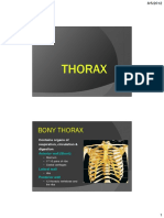 Thoraxic Wall