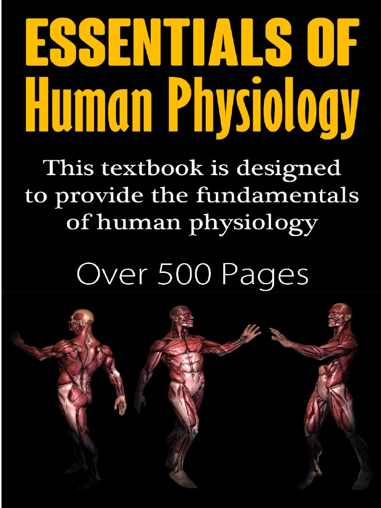 Essentials Of Human Physiology Homeostasis Respiratory System Structure Source People Eku Edu Unlabeled Prokaryotic Cell Diagram