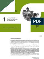 Organización Del Sistema de Salud en Argentina