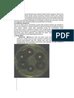 Metode Metode Dalam Mikrobiologi