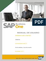 Manual Entorno SAP