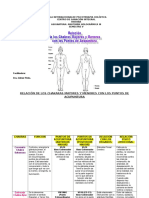 Trabajo Anatomía Holográmica III