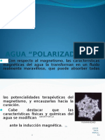Hidro-biomagnetismo 2009