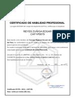 Certificado de Habilidad Del Arquitecto- Parodi