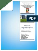 CULTURA ORGANIZACIONAL - UNIDAD III