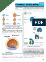 13 - Desenvolvimento Embrion_rio OK MED