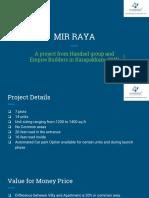 MirRaya Presentation