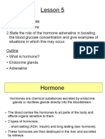 Endocrine Glands 1 (1).pdf