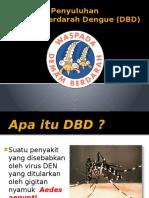 Penyuluhan Dbd 2