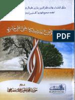 Zaeef Wa Mauzo Ahadees Ka Fanni Jaiza by Tufail Ahmad Misbahi