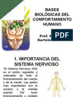 Bases Biológicas Del Comportamiento Humano
