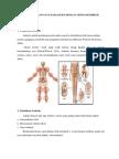 241118132 Askep Osteoarthritis