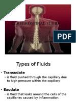 Cerebrospinal Fluid 2