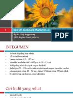 Sistem Ekskresi Manusia 2 Integumen Sma 2013