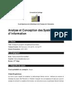 csi_plan.pdf