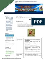 PENDIDIKAN ISLAM_ Bahagian Tamadun Islam Semester 2 - Ibnu Sina