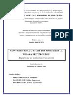 Djamila_RAHMOUNI.pdf