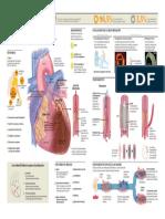 2012_Infarto de Miocardio.pdf
