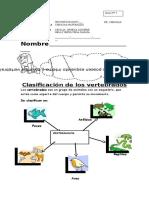 guia ciencias_clasificacion_vertebrados.docx