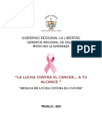 Plan Dia Mundial Contra Cancer 2015 Mrle